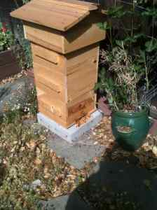 My beehive, built by Rhona Mahony